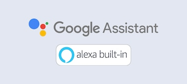 Google Assistant and Alexa built-in logo