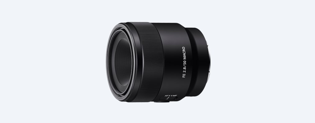 Images of FE 50 mm F2.8 Macro