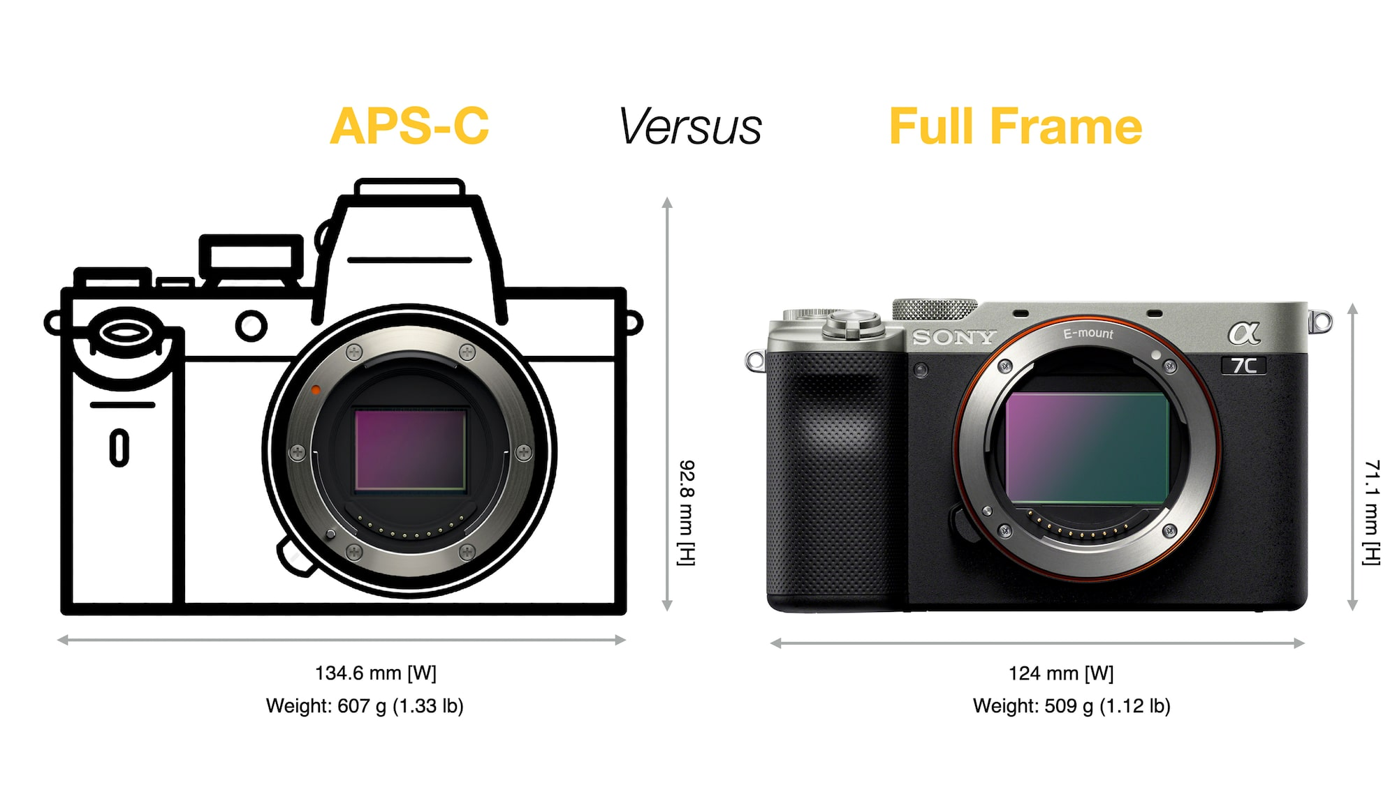APS-C vs. Full-frame camera