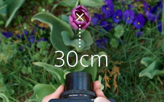 Sony DCS-RX100 III Cyber-shot digital camera provides a 30 cm working distance