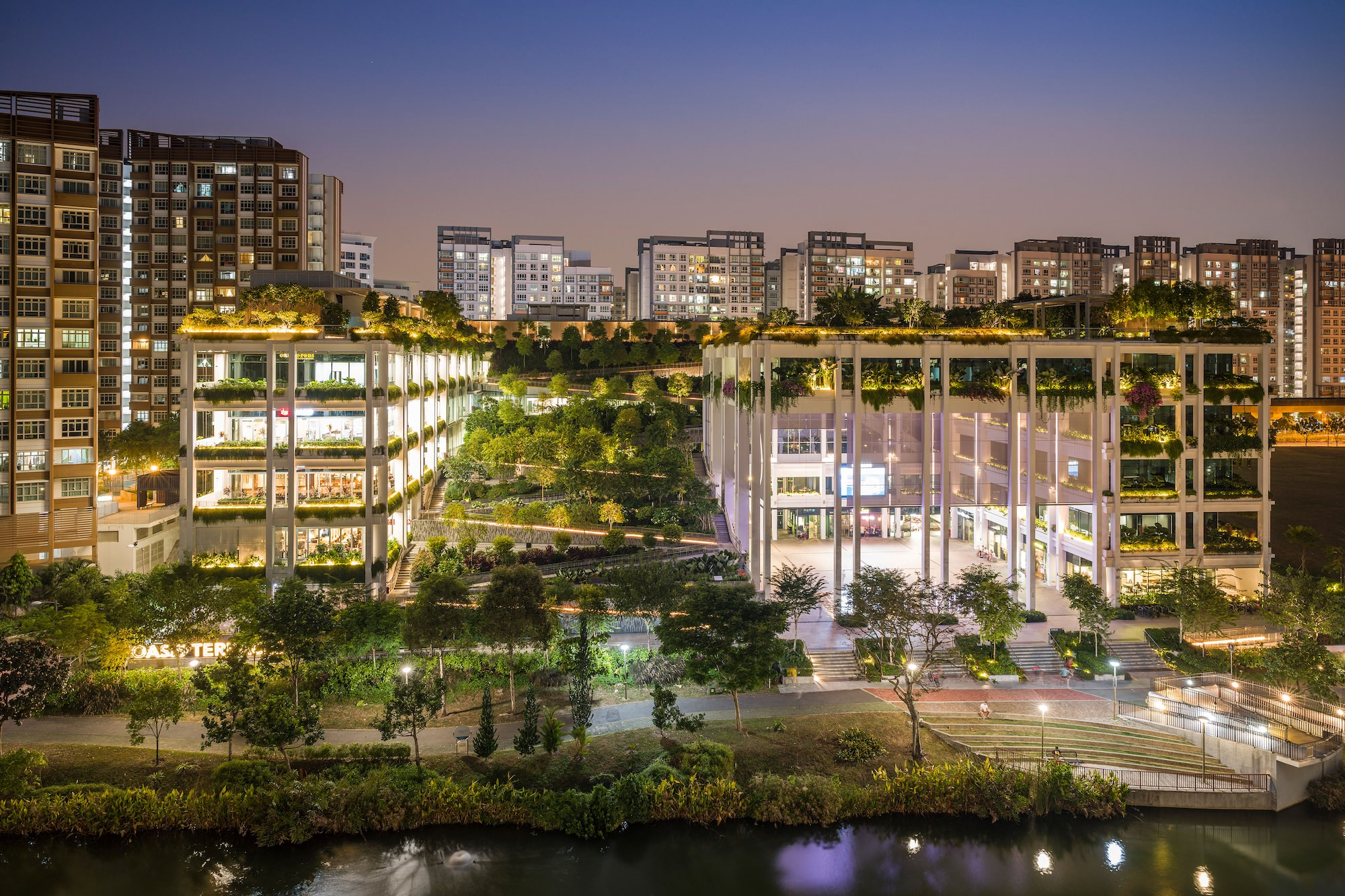 Sony Alpha 7R IV's advanced AF algorithms enable accurate precision in a night shot of Punggol's Oasis Terraces.